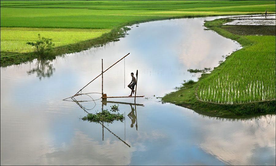Indian rural aquaculture- a birds eye view!