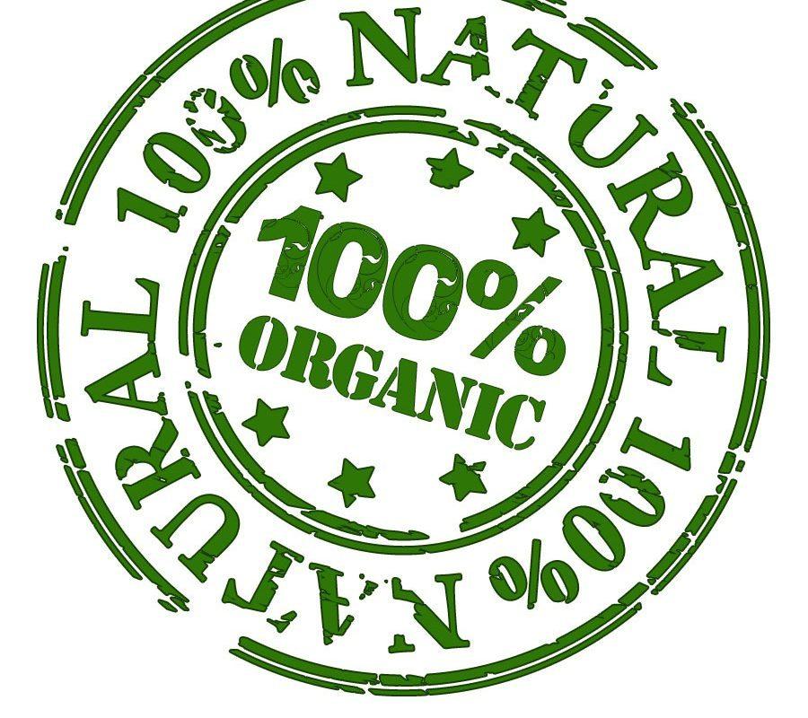 organic certification india certi