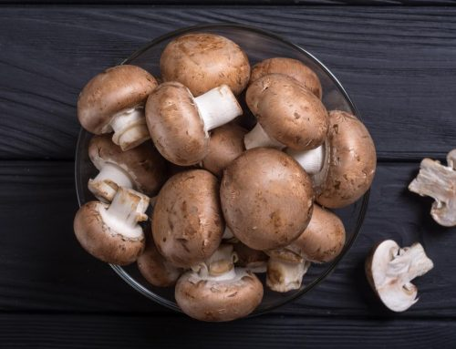 Mushroom Producers in Tamilnadu, India